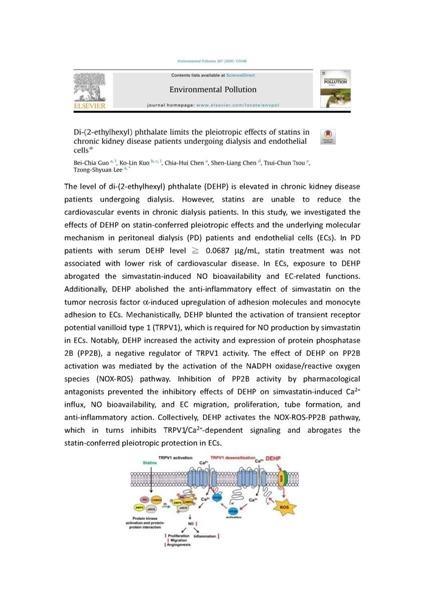 發表文章於 Environ Pollut. 2020 Dec;267:115548.