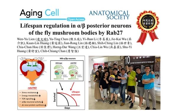 發表文章於 Aging Cell. 2020 Aug;19(8)e13179.